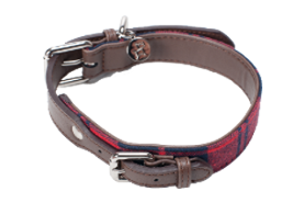 Dog Collar - Buffalo