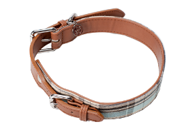 Dog Collar - Clover