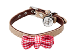 Puppy Collar - Doug